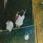 2003-Brujitas de medianoche, 40x50